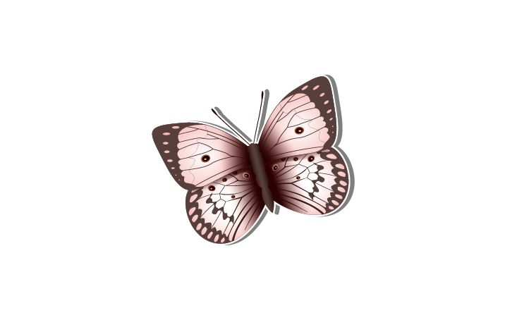 Butterfly Vector Image  #butterfly #vector #vectorpack  http://www.vectorvice.com/spring-special-vector-pack