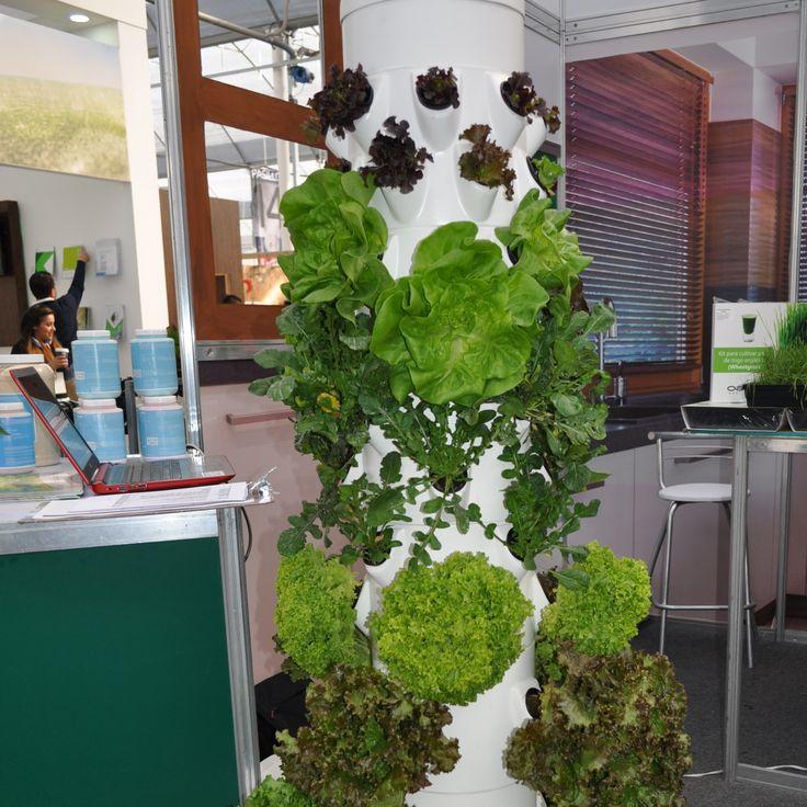 hortitower es un sistema aeropnico para el cultivo de hortalizas diseado para optimizar espacios