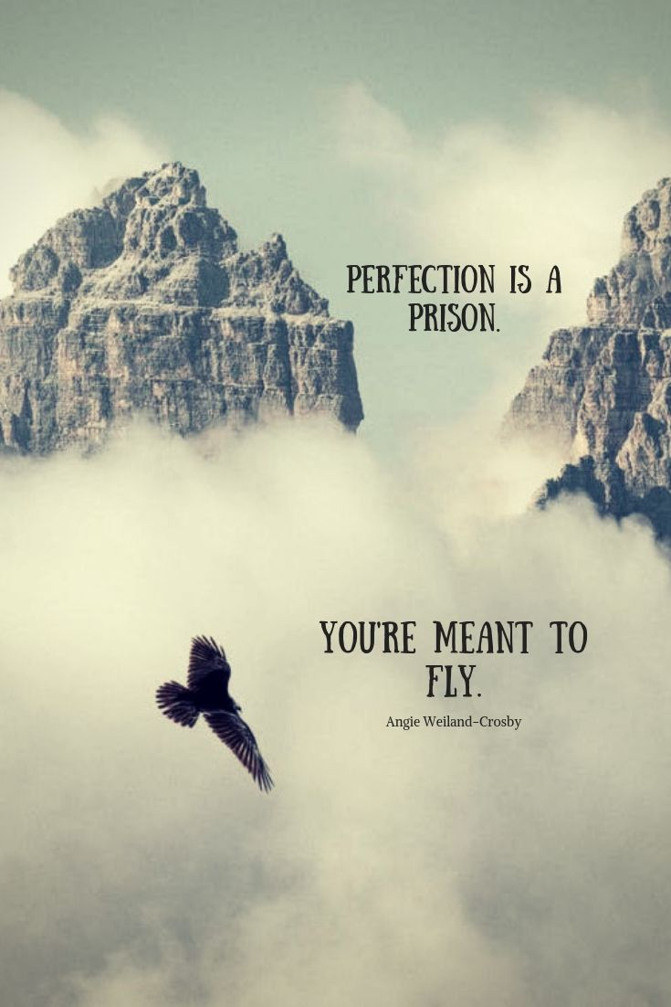 60+ Fly High Quotes And Sayings (The Best Inspiration Hub