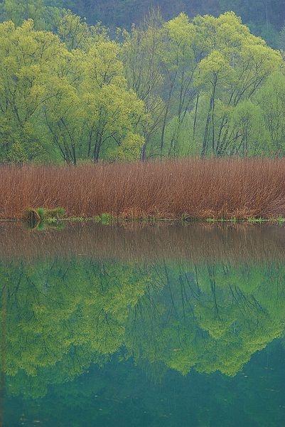 Posta Fibreno (FR) Lazio, Italy -  Regional Nature Reserve of Posta Fibreno Lake - Photo by Marco Pantanella
