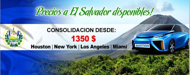 News - Auction Export -El Salvador