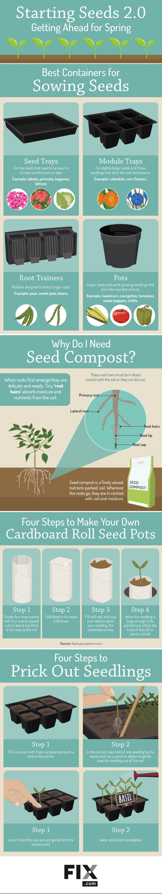 It all starts with the seed. Watching it germinate, watching it grow, and watching that plant become a wonderful harvest. Gardening is amazing! Here's a rough guideline of when to start your seeds either by direct seeding or by growing your own transplants. It's always good to double check your