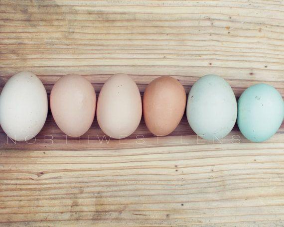 Kitchen Wall Art Photography: Rainbow Of Eggs Part 40