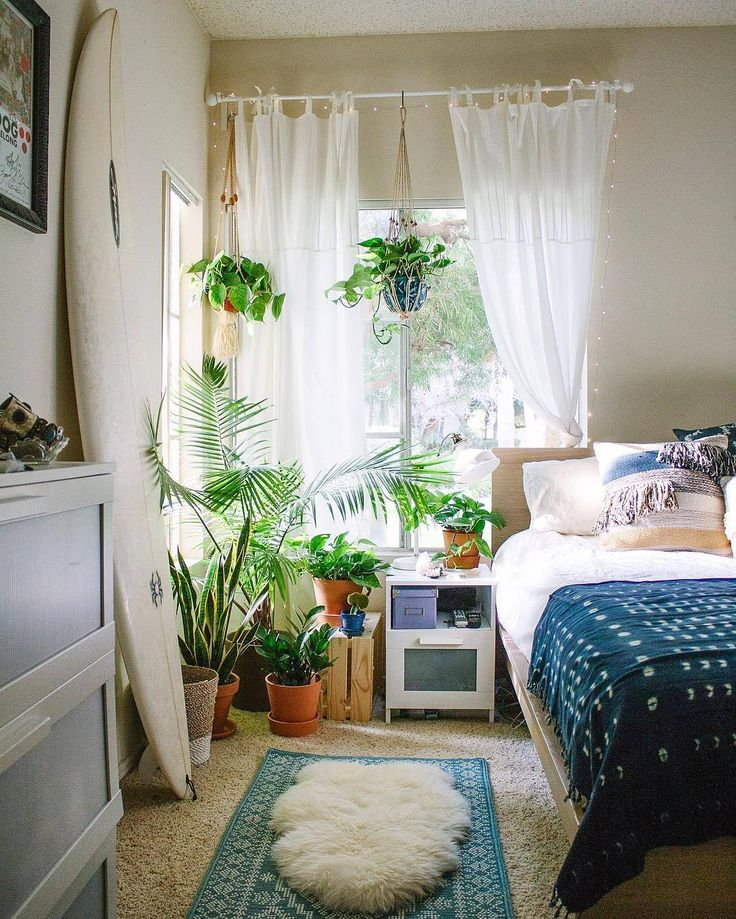 Bedroom Plants Best Plants For Bedroom To Help You Sleep