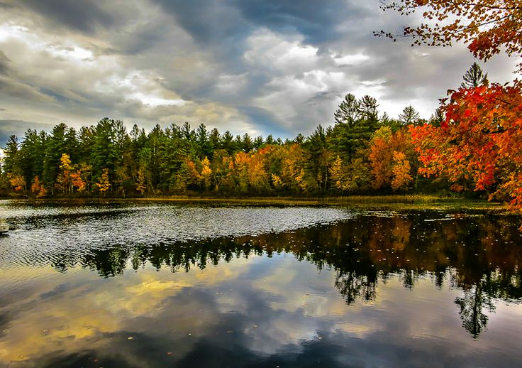 The New England fall foliage is crazy beautiful!