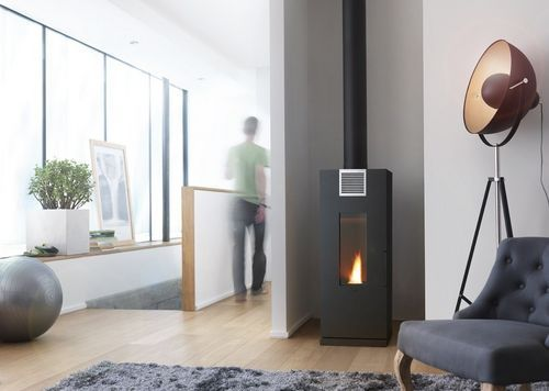 Contemporary wood pellet stove (cast iron) THERA by B. Dequet INVICTA
