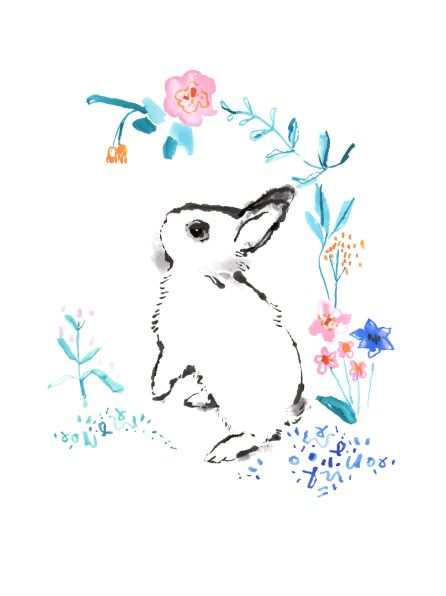 Charlotte Maddison Illustrator rabbit dwarf hotot floral illustration. £15 free UK delivery. Posts worldwide.