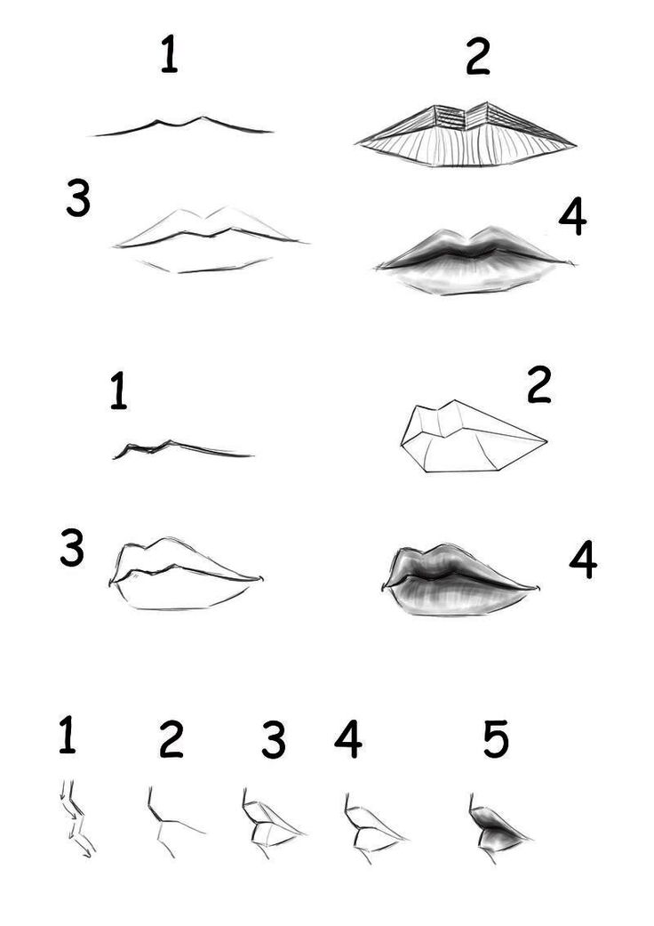 easy-drawing-for-beginners-step-by-step-.jpg (800×1132)