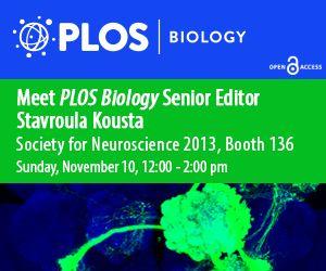 PLOS Biology at SfN 2013: Open for Neuroscience | PLOS Biologue