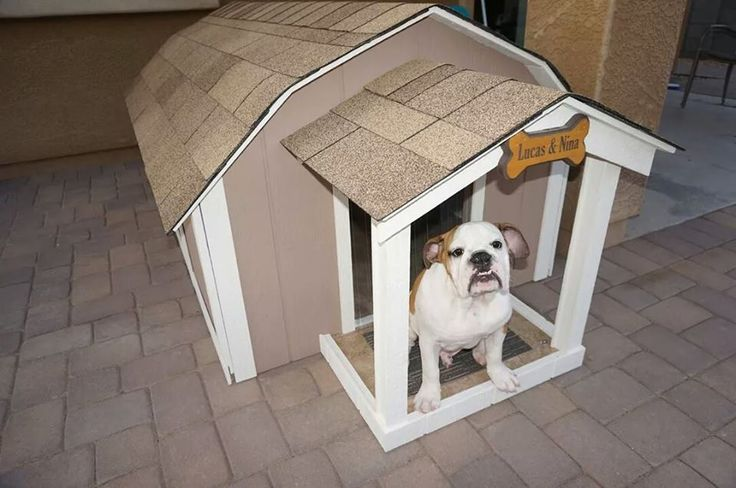 Ricky Lee's Air Conditioned Dog Houses - Large Presidential Dog House With A/C, $600.00 (http://stores.rickyleesdoghouses.com/large-presidential-dog-house-with-a-c/)
