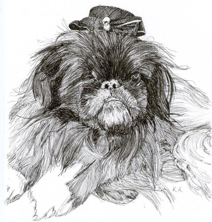 My dear dog Perle