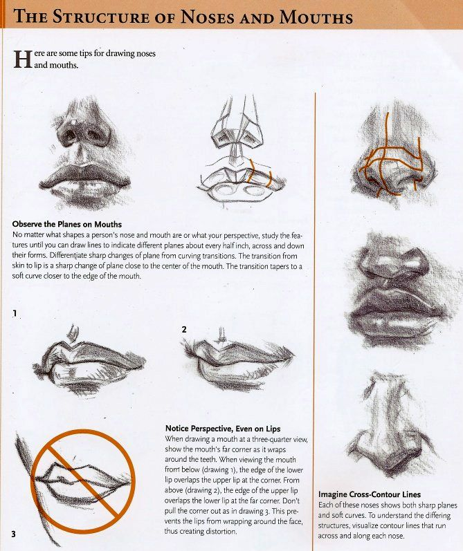 how to draw a nose and mouth