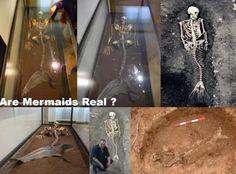 Você acredita em Sereias? Veja este Esqueleto no Museu Nacional em Copenhague na Dinamarca!!