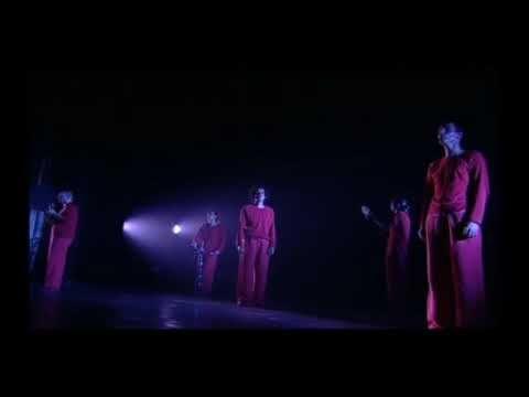 ▶ Superbe chanson sur un enfant mort-né Les Wriggles officiel :Les Papillons .Magnifique - YouTube