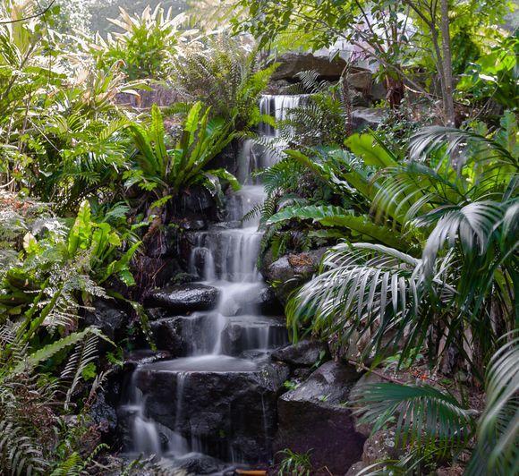 Maleny Queensland Australia