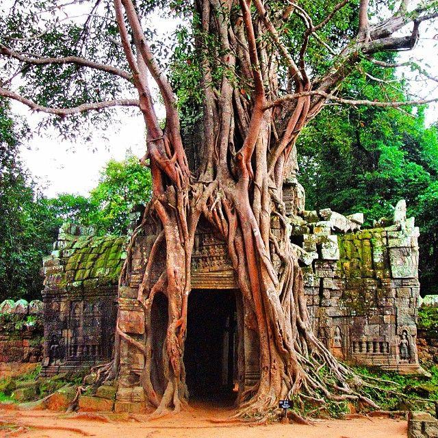 Angkor Wat in Cambogia, Siem Reap.  http://www.rentholidayworld.com/Holiday/Cambodia/Siem%20Reap/Siem%20Reap