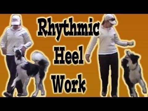 Heel work for canine freestyle or heel work to music...  www.youtube.com/pamelamarxsen