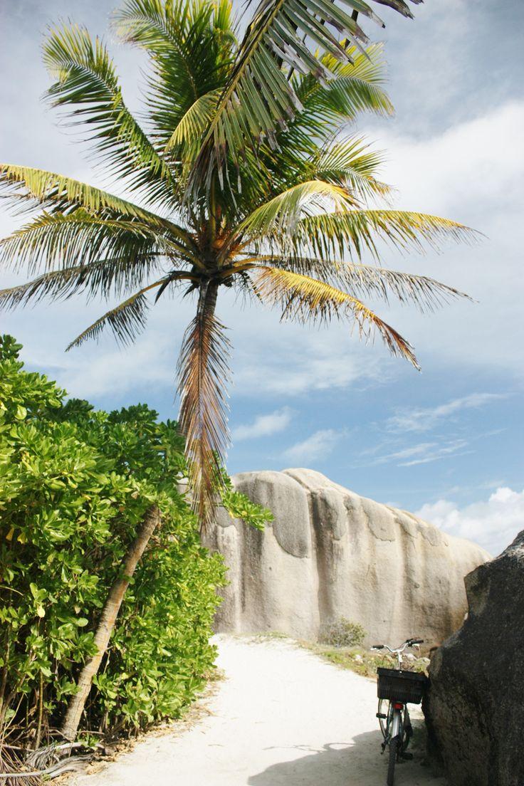 Seychellen / Kristina Haupt