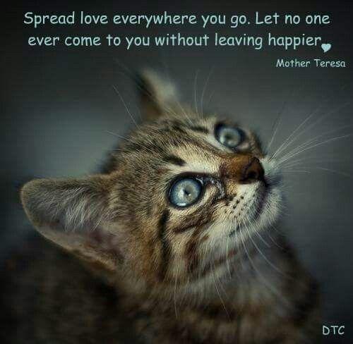 Awwww.... spread the love