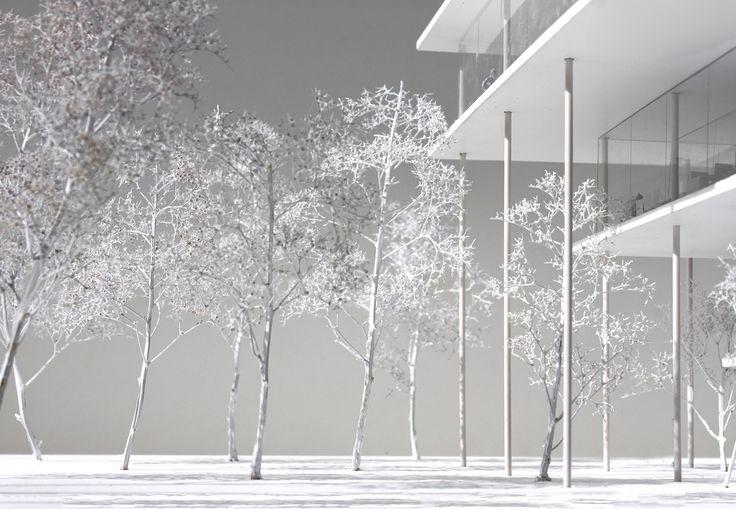 JAJA Architects Among Winners at Daegu Gosan Public Library Competition
