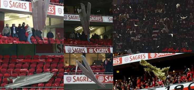 A Minha Chama: A Benfica TV E O Resto