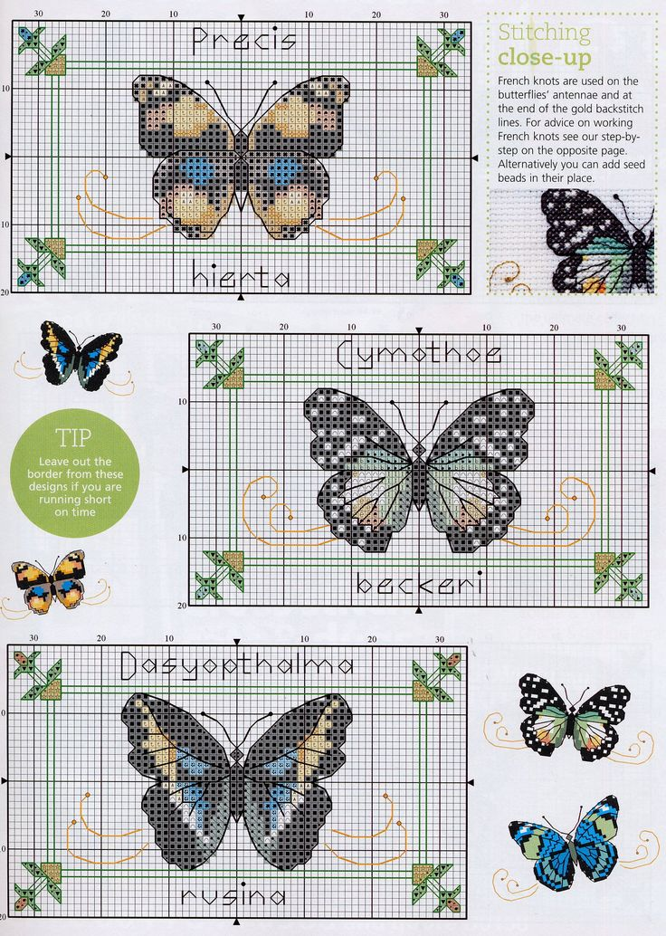 http://i015.radikal.ru/1103/cf/c7bc5adad820.jpg cross stitch pattern butterfly designs