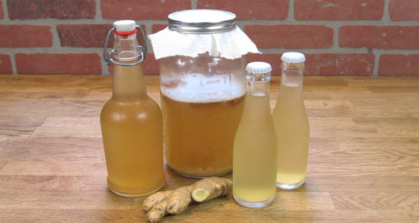 Ginger is mentioned in ancient Chinese, Indian and Middle Eastern writing, and had been prized throughout several millennia for its culinary and medicinal properties.