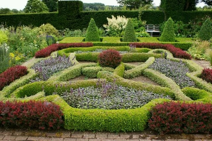 Not gardening. Knot gardening.