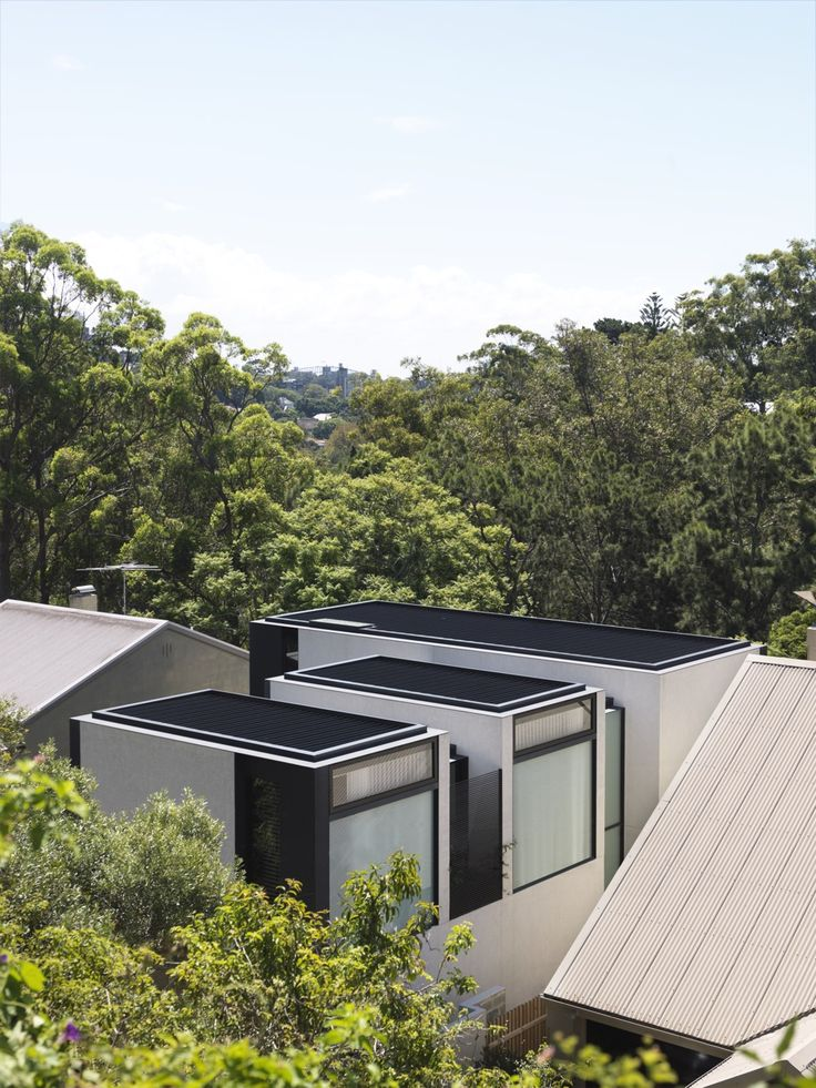 Tobias Partners - Cooper Park House surrounded by greenery.