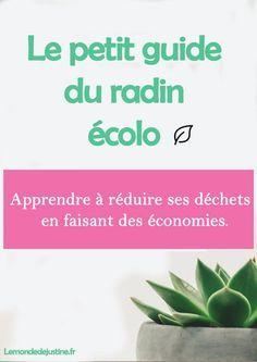 Le petit guide du radin écolo - l'ebook qui apprends à réduire ses déchets en faisant des économies. Le Monde de Justine