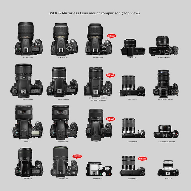 Best 25+ Canon camera comparison ideas on Pinterest   Canon lens ...