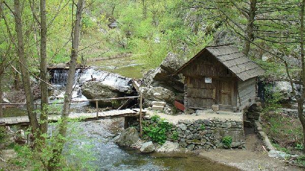 """Pe Valea Rudăriei, în Munţii Almăjului, se află singura rezervaţie mulinologică din România. Termenul """"mulinologie"""" se referă la ştiinţa care se ocupă cu studiul morilor, iar în Caraş-Severin se află cea mai mare rezerva"""