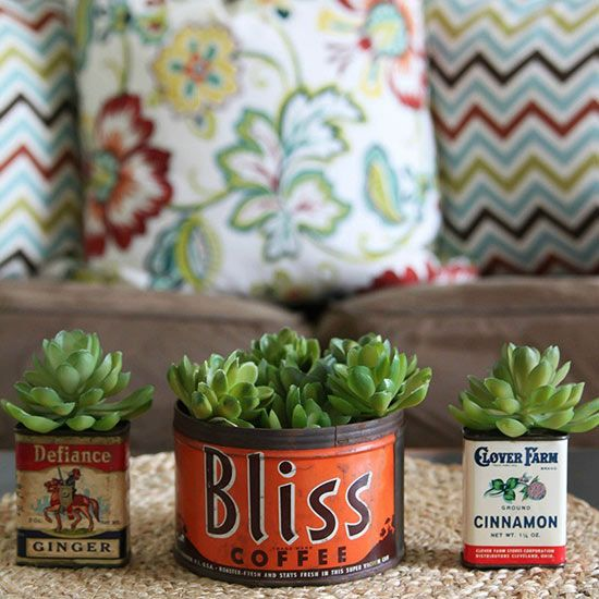 vintage spice canisters at her grandma's garage sale, the House of Hoff blogger was inspired to repurpose them as a centerpiece, filling each with faux succulents she made herself.