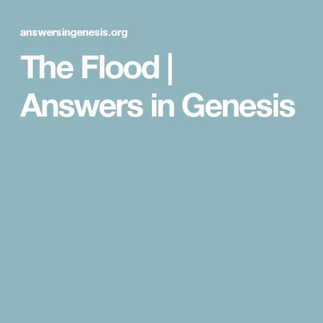 The Flood | Answers in Genesis