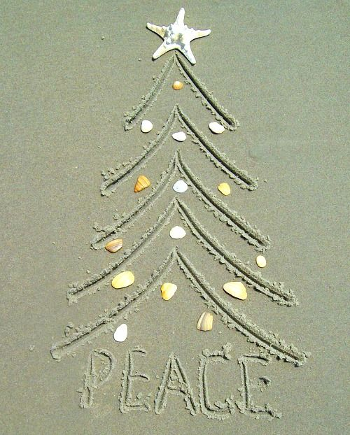 Love the Beach? Take your own Christmas card pictures this year, right on the beach. 24 Crazy cute ideas: http://beachblissliving.com/beach-christmas-card-photo-ideas/ Fun family Christmas photos, colorful ornament shots, and many more.