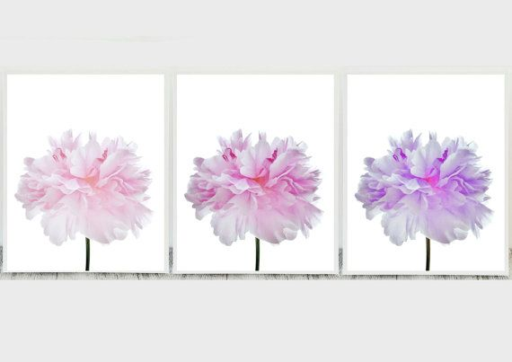 Set of 3 Flowers Prints Set of 3 Prints Flower by CristylClear