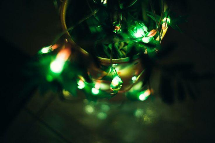 Το πράσινο συμβολίζει τη ζωή και την αναγέννηση... Επειδή τα έχουμε ανάγκη, ας τα φωτίσουμε! #arive #photo #28_12_2013 http://ow.ly/swglt