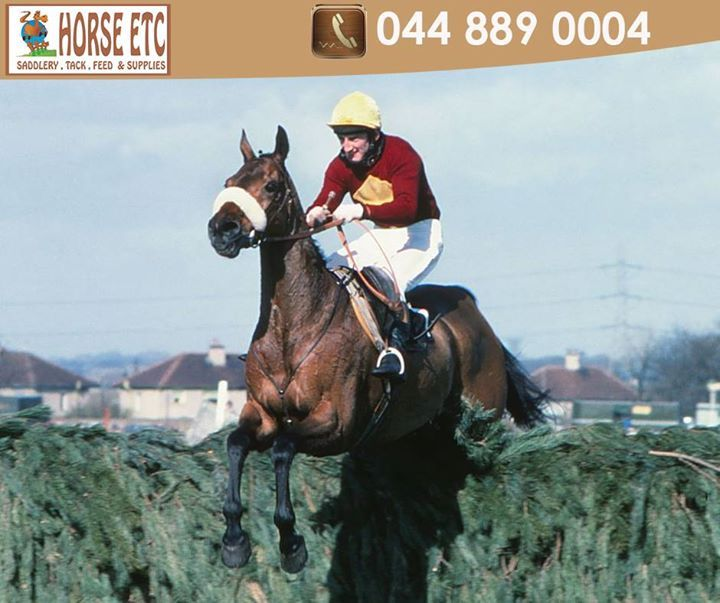Our #throwbackthursday image this week takes us back to when  Red Rum, ridden by Tommy Stack, wins the 1977 Grand National. Who remembers this fantastic horse? #tbt #trivia