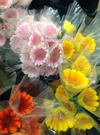 ガーベラの花は一年中アレンジメントや花束、装飾等に使われる人気商材 ガーベラ は、キク科ガーベラ属の総称で多年草。 温帯な地域および、熱帯アジアやアフリカなどに分布  ガーベラ仕入れをご検討される方は下記へご連絡下さい。 【神南フラワー 045-779-2071】担当 : 飛田  HP : http://www.shinnan-f.co.jp/  FB : https://www.facebook.com/shinnanf