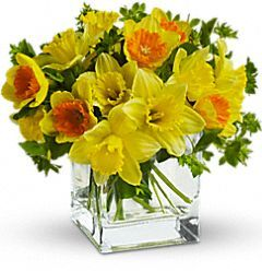birth month flowers/meanings: February - Iris - faith, valor, wisdom; friendship, hope.  Blue, purple, yellow, white. May - Lily - virtue, sweetness, humility, purity of heart, majesty, honor.   November - Chrysanthemum - noble, orderly, meditative, optimism, happiness.