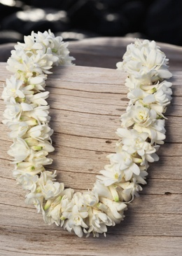 A favorite flower of mine. Sweet and exotic, I first discovered it when in Hawaii.   Double Tuberose Lei