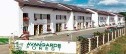 Avangarde Forest lanseaza noul site de prezentare