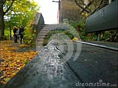 An autumn shot of one of a bench in Lund, Sweden