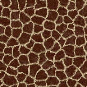 Textures Texture seamless | Giraffe faux fake fur animal texture seamless 09567 | Textures - MATERIALS - FUR ANIMAL | Sketchuptexture