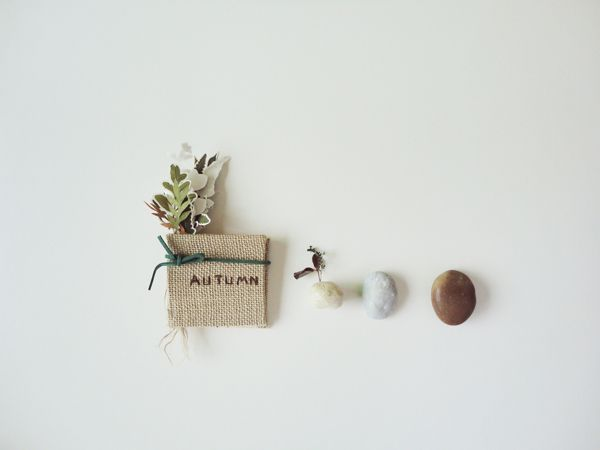 a cup fall Autumn on Behance