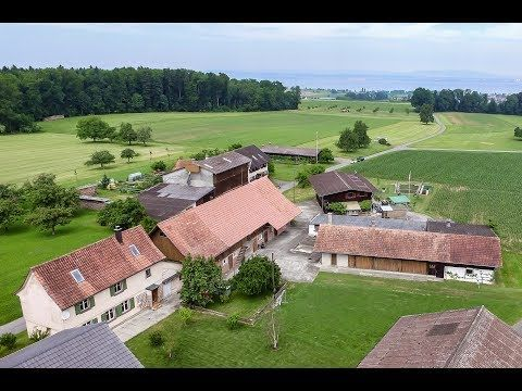 Bauernhof mit 5'600 m² Land in Güttingen