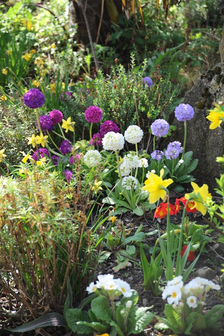 Spring in Findhorn.....
