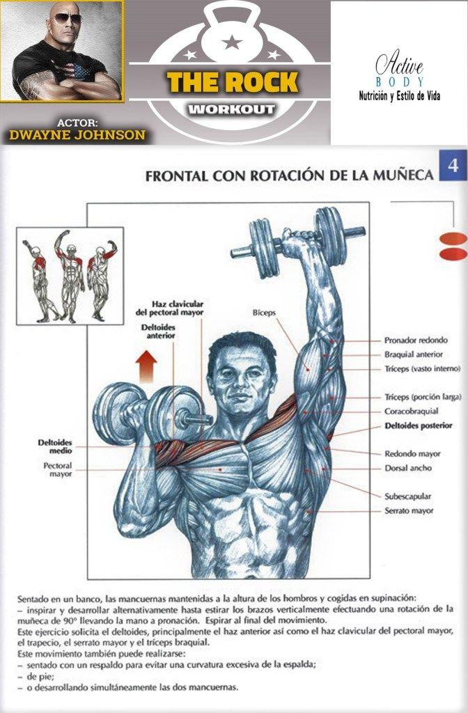 Los Mejores Ejercicios Para Desarrollar Los Hombros Active Body Basic Gym Workout Gym Workout Chart Pooch Workout