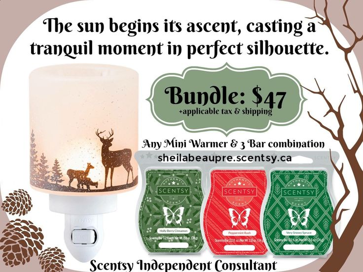 SCENTSY WARMER BUNDLE  LIFETIME WARRANTY  The sun begins its ascent, casting a tranquil moment in perfect silhouette.