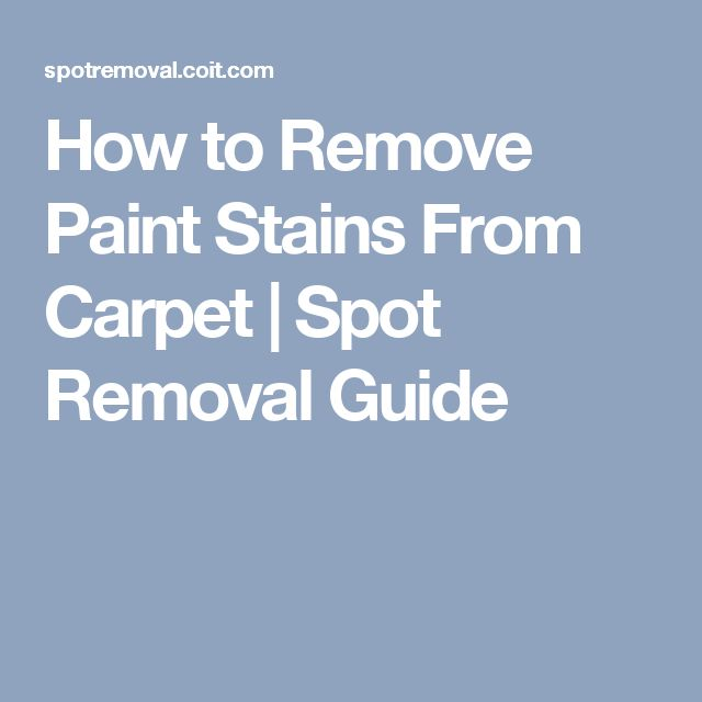 25 Best Ideas About Remove Paint From Carpet On Pinterest